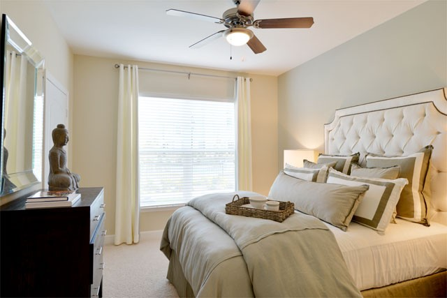 Upscale Apartment in The Woodlands