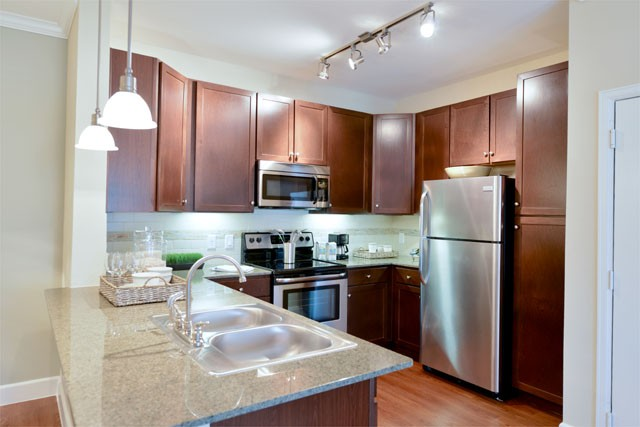 Upscale Apartment in The Woodlands area