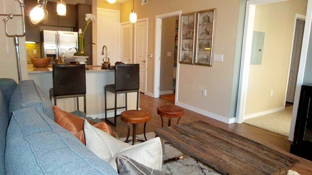 beautiful apartment in the woodlands